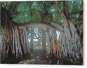 Ancient Arch Wood Print by Terry Reynoldson