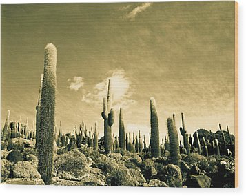 Wood Print featuring the photograph Ancient Giants by Lana Enderle