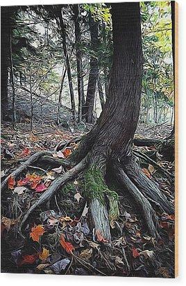 Ancient Root Wood Print by Natasha Marco