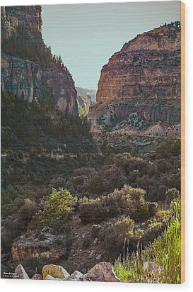 Wood Print featuring the photograph Ancient Walls In Wyoming by Karen Musick