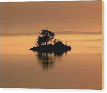 And The Fog Rolls In Wood Print by Larry Trupp