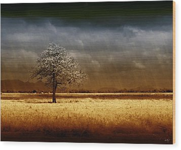 And The Rains Came Wood Print