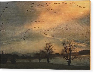 And They Flew Away Wood Print by Kathy Jennings