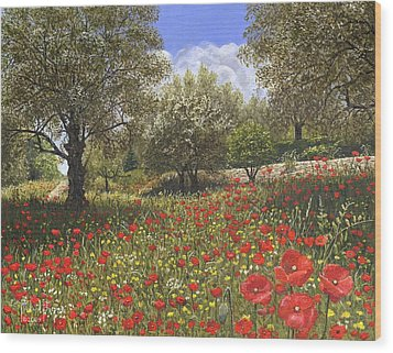 Andalucian Poppies Wood Print by Richard Harpum