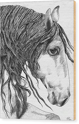 Andalusian Horse Wood Print by Kate Black