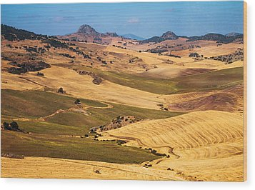 Andalusian Patchwork Fields I. Spain Wood Print by Jenny Rainbow