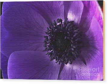 Anemone Wood Print by Rebeka Dove