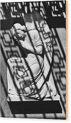 Angel In The Shadows 1 Wood Print by Swank Photography