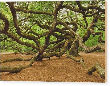 Angel Oak Tree Branches Wood Print by Louis Dallara