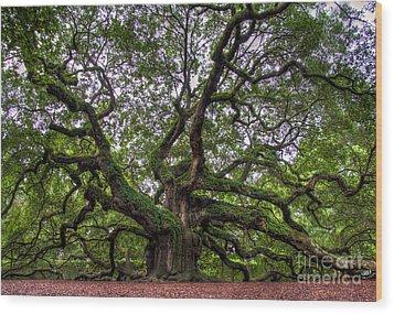 Angel Oak Tree Wood Print