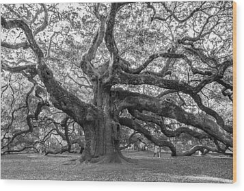 Wood Print featuring the photograph Angel Oak Tree by Patricia Schaefer