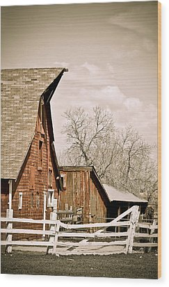 Angle Top Barn Wood Print by Marilyn Hunt