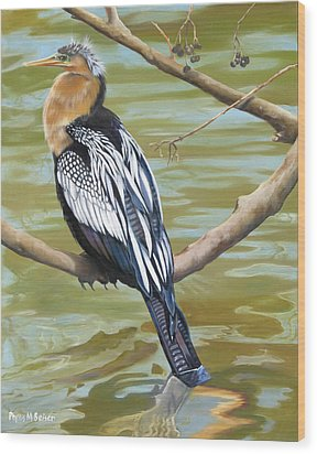 Anhinga Perched Wood Print by Phyllis Beiser
