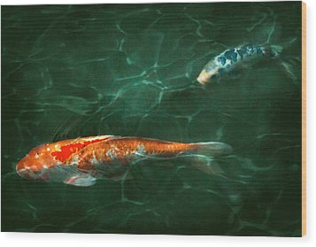 Animal - Fish - Koi - Another Fish Story Wood Print by Mike Savad