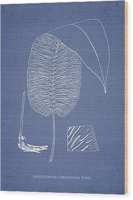 Anisogonium Cordifolium Wood Print by Aged Pixel