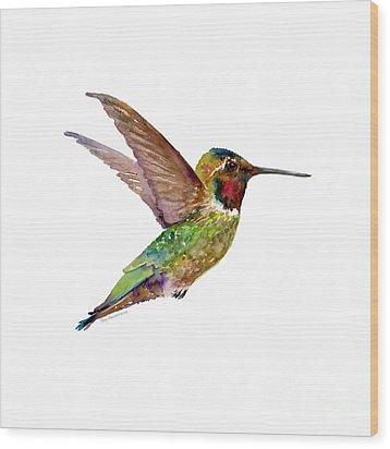 Anna Hummingbird Wood Print by Amy Kirkpatrick