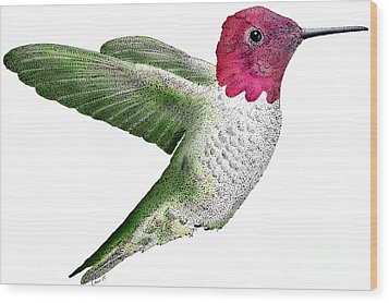 Annas Hummingbird Wood Print by Roger Hall