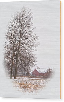 Annie's Barn Wood Print by Pamela Baker