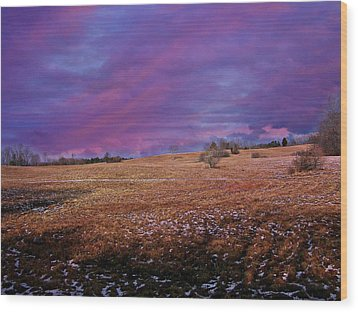 Another Day Wood Print by Barbara S Nickerson