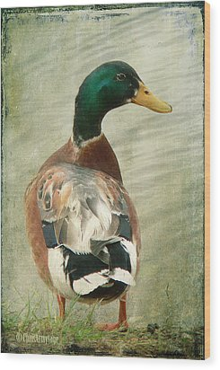 Wood Print featuring the photograph Another Duck ... by Chris Armytage