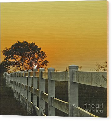 Another Tequila Sunrise Wood Print by Robert Frederick
