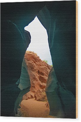 Antelope Canyon Bear Wood Print by Dany Lison