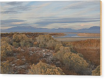 Wood Print featuring the photograph Antelope Island - Scenic View by Ely Arsha