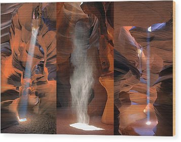 Antelope Triptych Wood Print by Patrick Jacquet