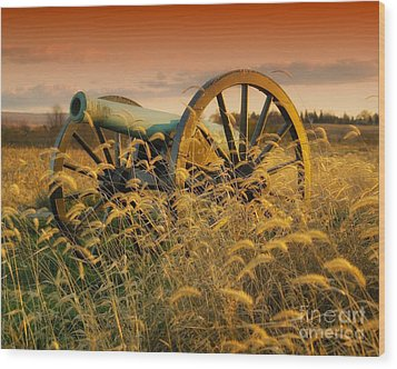 Wood Print featuring the photograph Antietam Maryland Cannon Battlefield Landscape by Paul Fearn