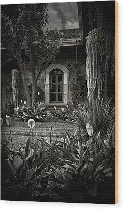 Antigua Garden Wood Print by Tom Bell