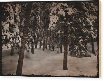Antique Woodscape Wood Print