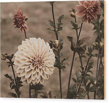 Antiqued Dahlias Wood Print by Jeanette C Landstrom