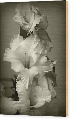 Antiqued Gladiolus Wood Print by Jeanette C Landstrom