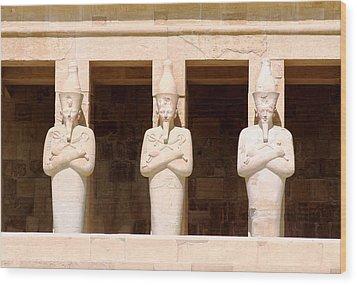 Anubis Wood Print by A Rey