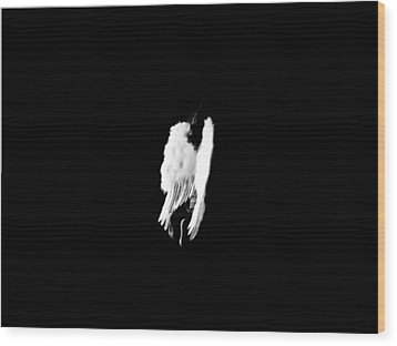 Wood Print featuring the photograph Anyas Wings  by Jessica Shelton