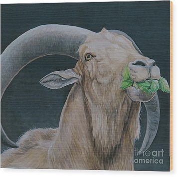 Aoudad Sheep Wood Print by Charlotte Yealey