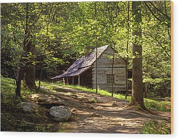 Appalachian Mountain Log Cabin Wood Print by Paul W Faust -  Impressions of Light