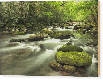Wood Print featuring the photograph Appalachian Spring Stream by Phyllis Peterson