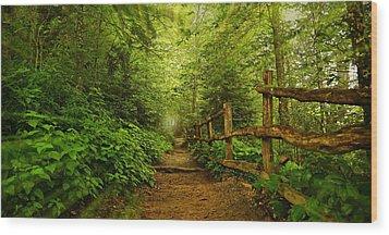 Appalachian Trail At Newfound Gap Wood Print