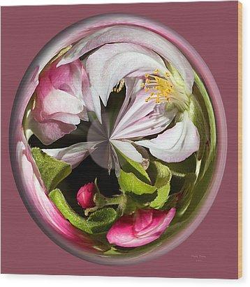 Apple Blossom Globe Wood Print by Phyllis Denton