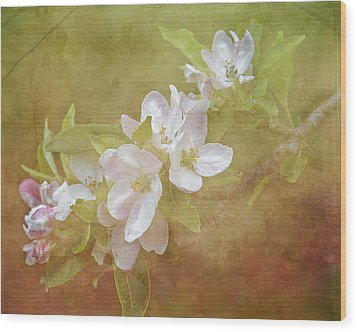 Apple Blossom Spring Wood Print by TnBackroadsPhotos