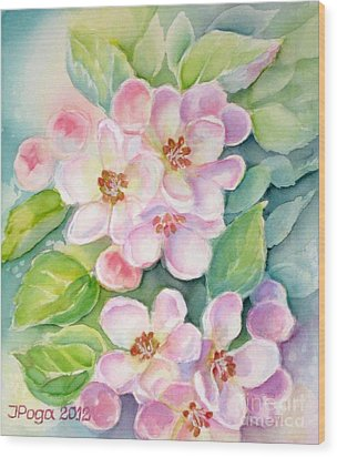 Apple Blossoms 1 Wood Print by Inese Poga