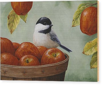 Apple Chickadee Greeting Card 1 Wood Print by Crista Forest