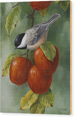 Apple Chickadee Greeting Card 3 Wood Print by Crista Forest