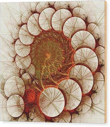 Apple Cinnamon Wood Print by Anastasiya Malakhova