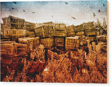 Apple Crates And Crows Wood Print by Bob Orsillo