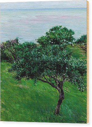 Apple Trees By The Sea Trouville Wood Print by Gustave Caillebotte