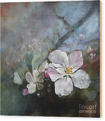 Appleblossom Wood Print by Stephanie  Koehl