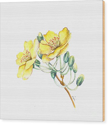 Apricot Blossom Wood Print by Dion Dior