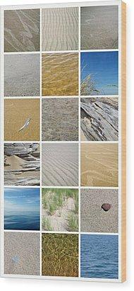 April Beach Wood Print by Michelle Calkins